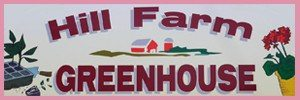 Hill Farm Greenhouse Newmanstown