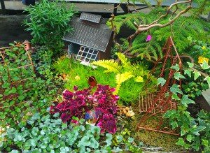 Garden-Miniatures-Black-Creek-Greenhouse