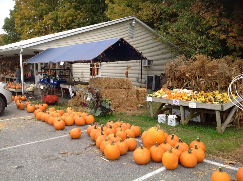 Horst Farm Market East Earl PA Lancaster County local Field-to-Table Produce Market Fare Varieties Field to table homegrown produce pumpkins fall varieties