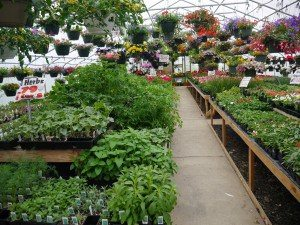 Hilltop Acres Farm Market Manheim Lancaster County PA