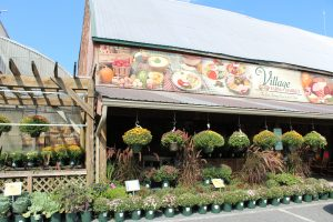 The Village Farm Market Ephrata Lancaster County PA Fall Harvest Gallery