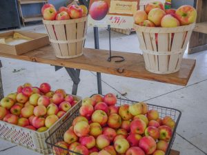 Fruit Farms Orchards Apples Strawberries Peaches Cherries Lancaster County PA Dutch Country Freezing Canning