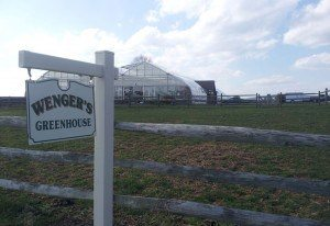 Wenger's-Greenhouse-Outside