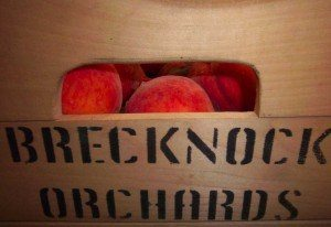 Brecknock-Orchards-About-Us