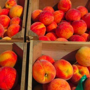 Brecknock-Peaches