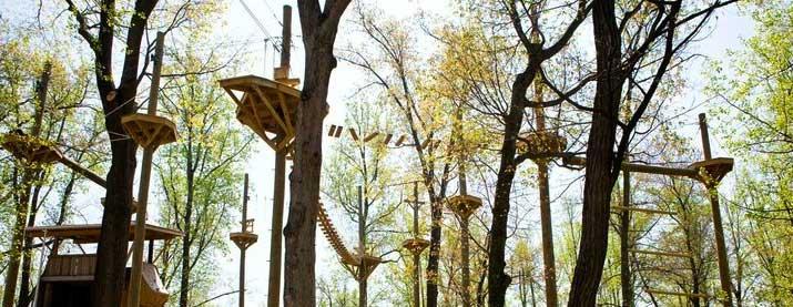 Refreshing-Canopy-Zipline