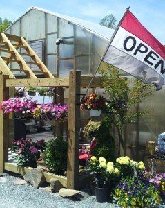 Tudbink's Farm Greenhouse Conestoga Lancaster County PA Planters Cityscaping Cityscape landscaping container gardens container gardening locally owned herbs