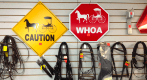 Locally owned and family operated since 2010, A and H Harness & Tack Co.
