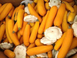 Busy Bee's Farm Market Ronks Lancaster County PA Locally Owned Family Operated Farm to Table