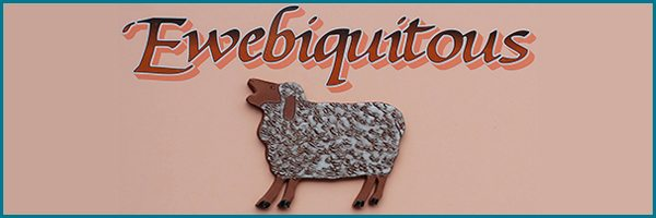 ewewbiquitous-fiber-arts-local-yarn-shop
