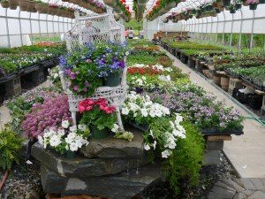 Funk's Riverview Greenhouse Washington Boro Lancaster County PA