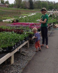 Funk's Riverview Greenhouses Washington Boro PA Lancaster County flowers gardens plants market 6