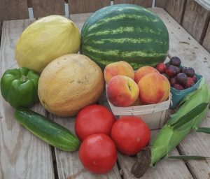CSA Programs Produce Fruits Vegetables Organic Non-GMO Fresh Lancaster County PA Dutch Country