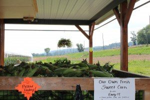 Rolling Gardens Farm Market Columbia Lancaster County PA Locally owned Family operated fresh corn