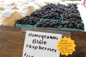 Rolling Gardens Farm Market Columbia Lancaster County PA Locally owned Family operated Black Berries