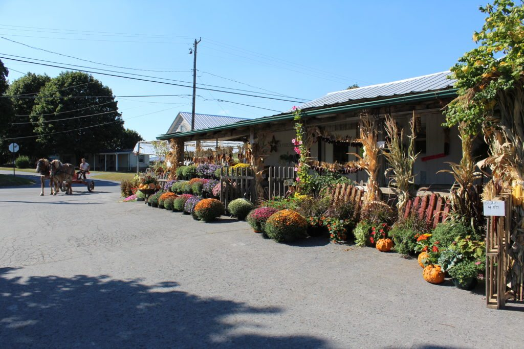 Wayside Produce East Earl Lancaster County PA Locally Owned Locally Operated Reallancastercounty Fall Harvest Varieties