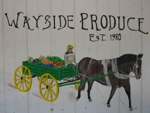 Wayside Produce East Earl Lancaster County PA