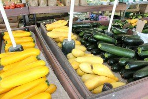 Stoltzfus Produce & Market Fare New Holland Locally Owned Family Operated Lancaster County
