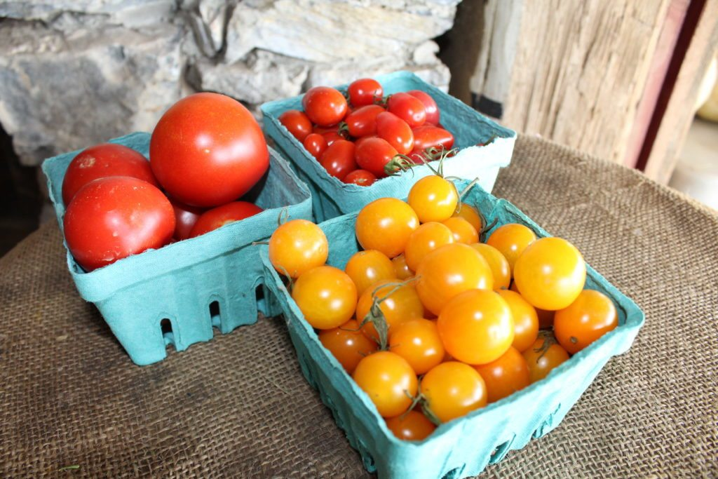 Hillside Produce Ephrata Northern Lancaster County Produce Field to Table Market Varieties Raw Milk Pastured Eggs Cheese