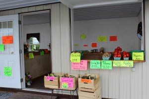 Napierville Orchard Ephrata New Holland Locally Owned Family Operated Produce Field to Table Market Fare Roadside Market Lancaster County