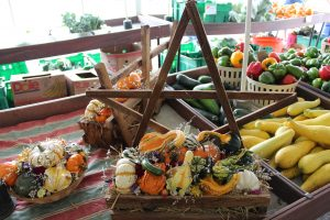 Stoltzfus Produce & Market Fare Fall Harvest Varieties Locally Owned Family Operated
