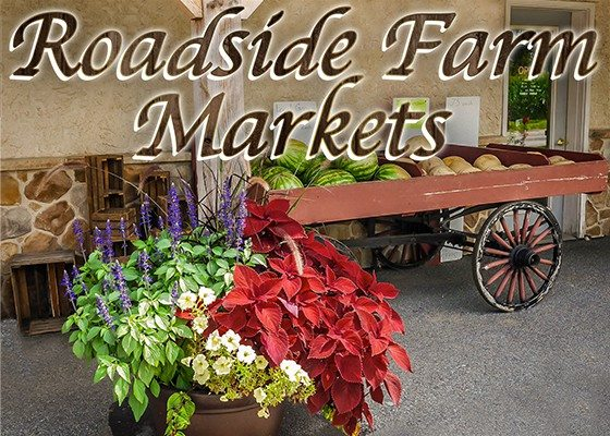 5.17.17 Roadside Farm Markets Sidebar