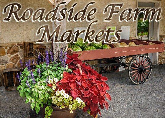 5.17.17 Roadside Farm Markets Sidebar