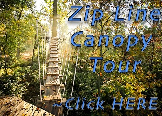 5.17.17 Zip Line Canopy Tours Sidebar