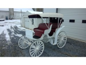 Auto Top Surry Carriage #355 Auto Top Surry White with Maroon PinStripes Red/Maroon Interior Hyd. Brakes Single Shaft Good Condition $3,000