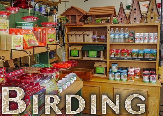 7.5.17 Birding Sidebar