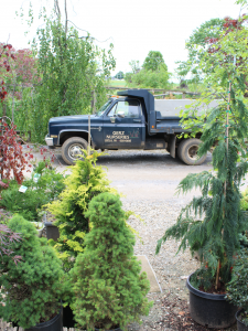 Gerz Nurseries landscape and design services leola pa lancaster county pennsylvania family owned family operated trees shrubs hardscapes landscape design