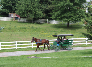 The Amish Farm and House Lancaster PA Locally Owned Locally Operated Lancaster County Pennsylvania Covered Bridge Drive House Tours Authentic Amish Experience Farmyard Petting Zoo Amish Countryside Tours Local Artisans Gift Shop Items
