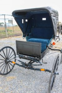 #525 Top Buggy Hyd. Brakes blue interior, single shaft Good used condition $900.00